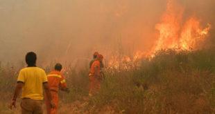 Italie : d'importants incendies ravageurs sévissent dans le nord-ouest